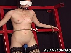 Chinese, Choking, Whipping, Boobs, Toys, Gagging, Tits, Bdsm, Asian, Kinky, Adorable, Vibrator, Latex, Stockings, Bound, Maledom, Tied up, Horny, Passionate, Pussy, Interracial, Japanese, Master, Bondage, Fetish, Sexy