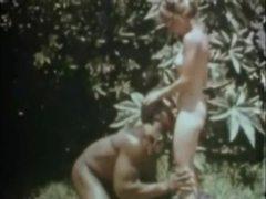 Slave, Antikk, Vintage, Klassisk, Flerraset, Hårete, Bdsm, Blå filmer, Retro