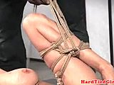 Submissive, High definition, Maledom, Tied up, Blonde, Big tits, Boobs, Nipples, Master, Tits, Bdsm, Tattoo, Fetish
