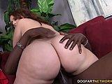 big ass anal czarny kogut