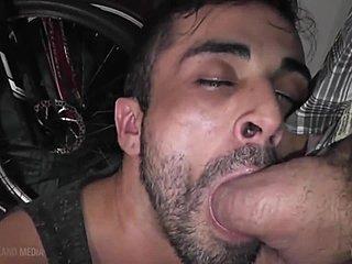 gezicht neuken blowjob
